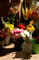cut-flowers-florence-italy.jpg