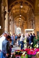flower-market-arcade.jpg