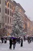 christmas-tree-snow.jpg