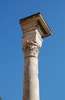 column-of-phocas.jpg