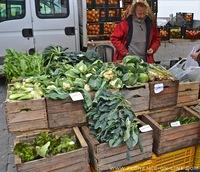 cauliflower-cabbage.jpg