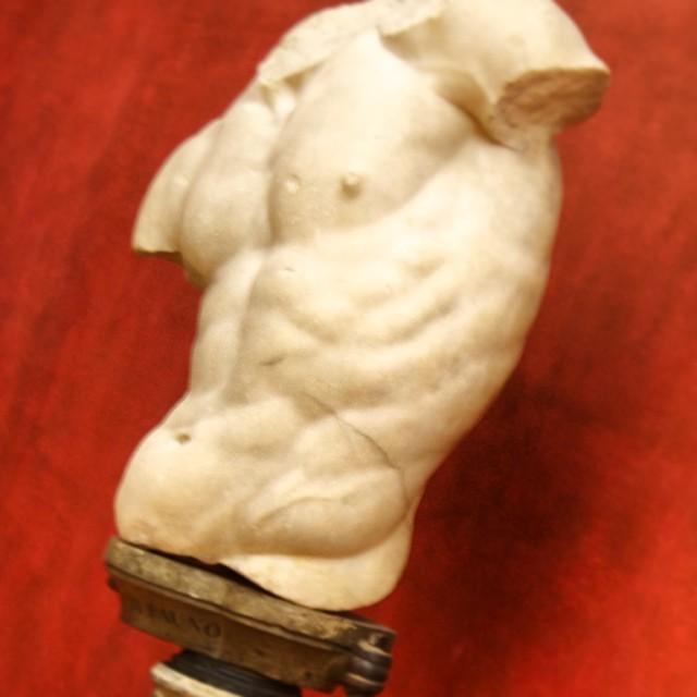 torso-centaur.jpeg